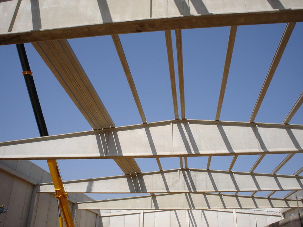 Diseño estructura metálica y de hormigón - Edinalia